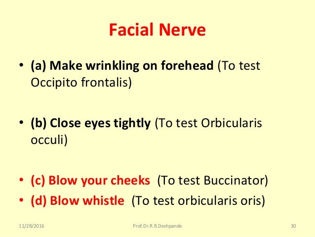 Facial Nerve • (a) Make wrinkling on forehead (Totest Occipitofrontalis) • (b) Close eyes tightly (TotestOrbicularis...