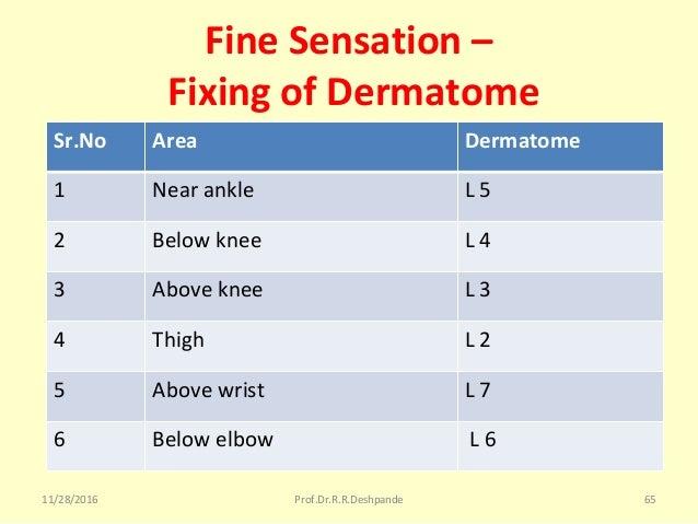 Fine Sensation – Fixing of Dermatome Sr.No Area Dermatome 1 Nearankle L5 2 Belowknee L4 3 Aboveknee L3 4 Thigh L...