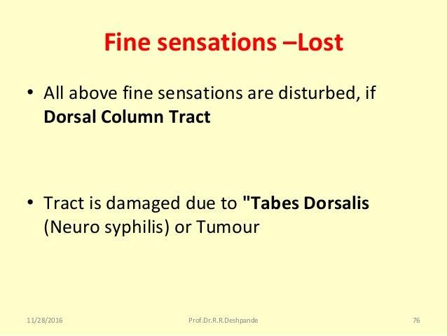 "Fine sensations –Lost • Allabovefinesensationsaredisturbed,if Dorsal Column Tract • Tractisdamageddueto""Tabes ..."