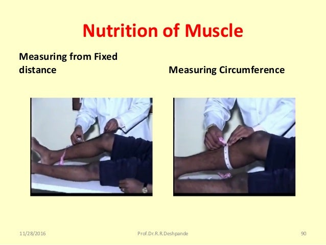 Nutrition of Muscle Measuring from Fixed distance Measuring Circumference 11/28/2016 Prof.Dr.R.R.Deshpande 90