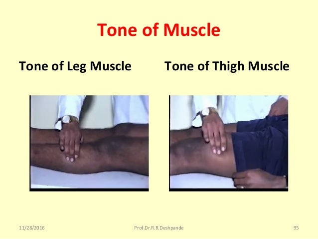 Tone of Muscle Tone of Leg Muscle Tone of Thigh Muscle 11/28/2016 Prof.Dr.R.R.Deshpande 95