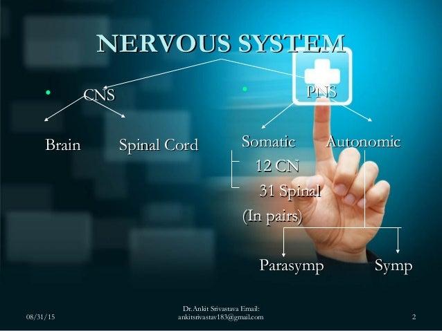 Central Nervous System (CNS) Examination Slide 2