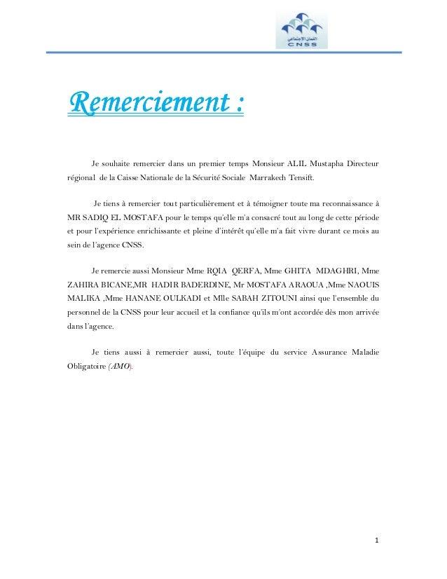 Rapport De Stage Cnss