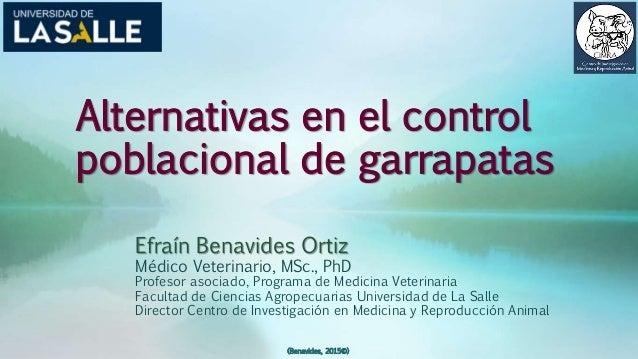 Alternativas en el control poblacional de garrapatas Efraín Benavides Ortiz Médico Veterinario, MSc., PhD Profesor asociad...