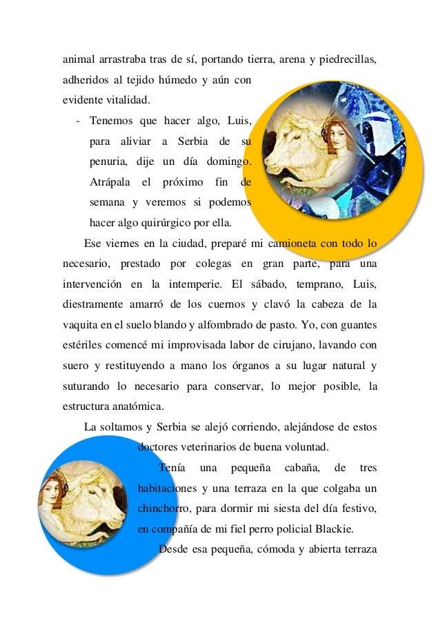 Único Hoja De Cálculo De La Anatomía Lombriz De Tierra Foto ...