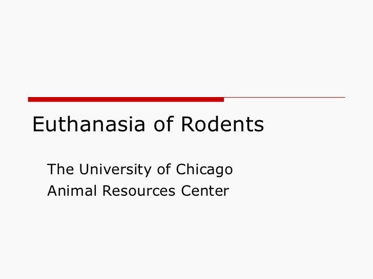 Euthanasia of Rodents The University of Chicago Animal Resources Center