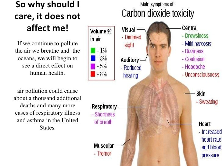 what is co2 in human body