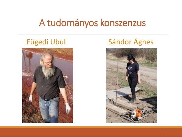 A tudományos konszenzus Fügedi Ubul Sándor Ágnes 1