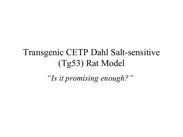 "Transgenic CETP Dahl Salt-sensitive (Tg53) Rat Model ""Is it promising enough?"""