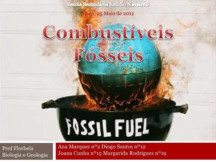 Viseu, 25 Maio de 2012Prof Florbela         Ana Marques nº2 Diogo Santos nº12Biologia e Geologia   Joana Cunha nº15 Margar...