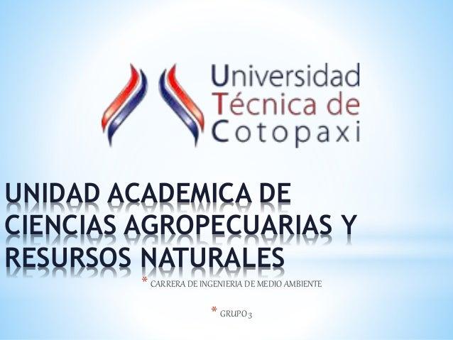 UNIDAD ACADEMICA DE CIENCIAS AGROPECUARIAS Y RESURSOS NATURALES * CARRERA DE INGENIERIA DE MEDIO AMBIENTE * GRUPO 3