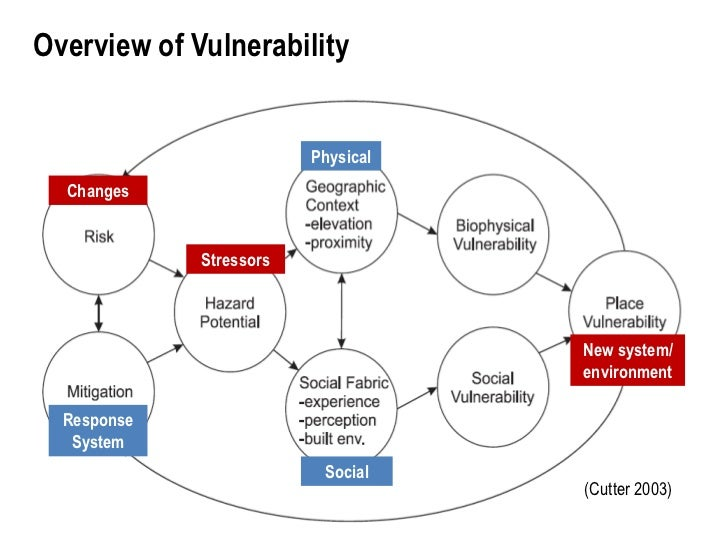 the issues of system vulnerability and abuse in business 2015/03/23 also, they discuss the procedure with regard to the complex cases of vulnerability and abuse where careful risk management and person centred practice is required self-directed support is enshrined within the personalisation.