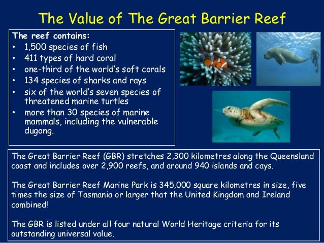 the importance of coral reefs to the earth Coral reefs are very productive ecosystems they are not only supporting  it is  one of the most important biodiversity hotspot on earth coral reefs often host.