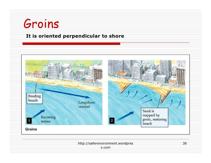 Groins It is oriented perpendicular to shore                        http://saferenvironment.wordpres   36                 ...