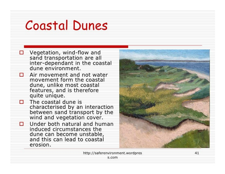Coastal Dunes Vegetation, wind-flow and sand transportation are all inter-dependant in the coastal dune environment. Air m...