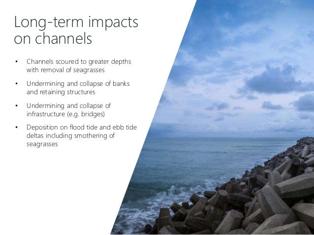 Long-term impacts on channels • Channels scoured to greater depths with removal of seagrasses • Undermining and collapse o...