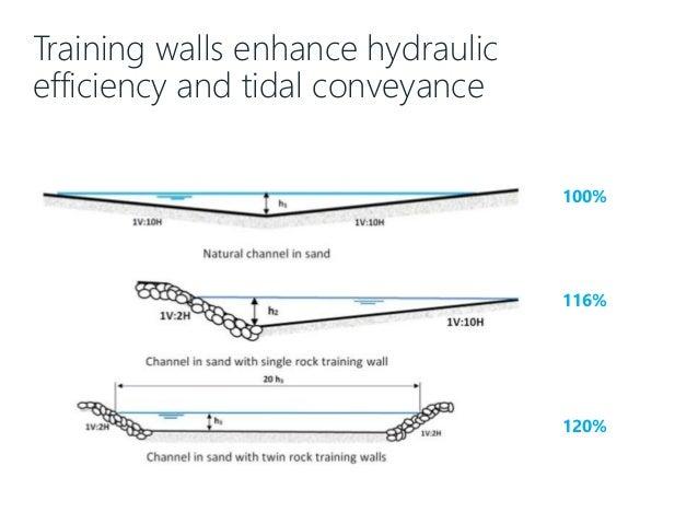 Training walls enhance hydraulic efficiency and tidal conveyance 100% 116% 120%