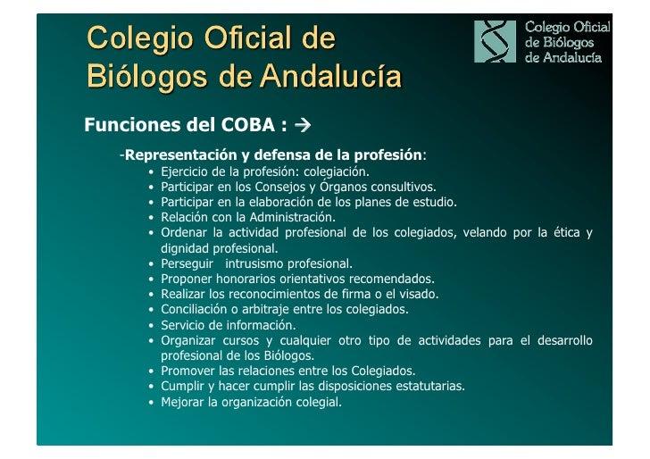 COBA ante RETOS PROFESIONALES:Programa de Gestión                    3 ÁREAS DE GESTIÓN                     7 PROGRAMAS   ...