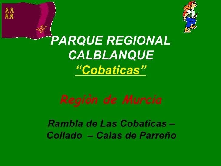 """PARQUE REGIONAL CALBLANQUE """"Cobaticas"""" Regiòn de Murcia Rambla de Las Cobaticas – Collado  – Calas de Parreño"""
