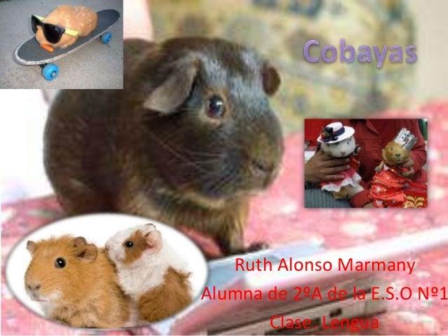 Ruth Alonso MarmanyAlumna de 2ºA de la E.S.O Nº1Clase. Lengua