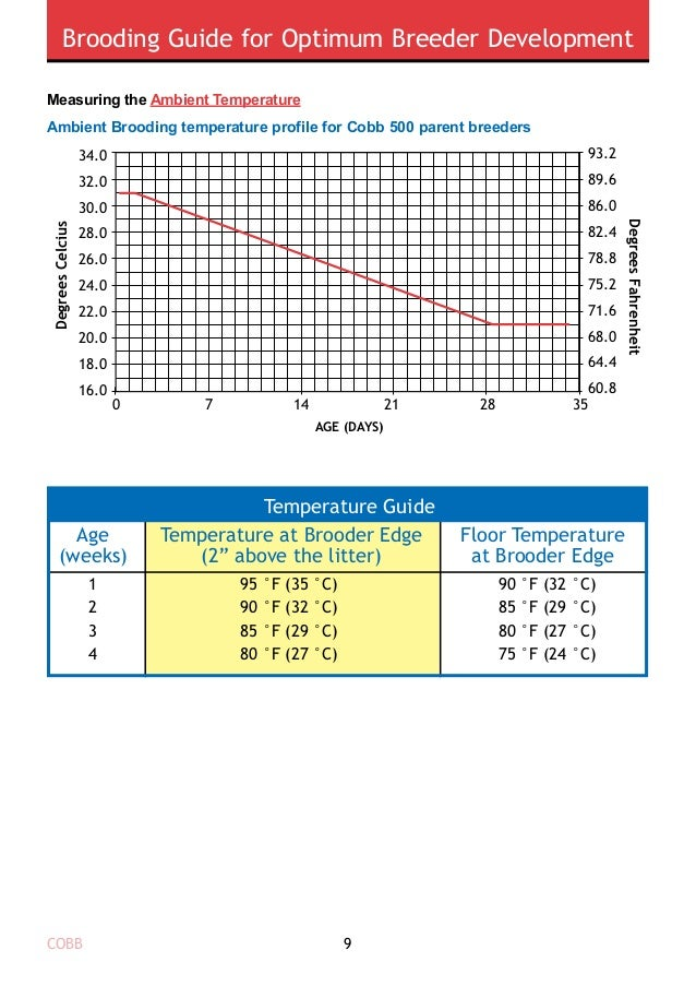 Brooding Guide for Optimum Breeder Development COBB10 The internal chick temperature should be used as a guide to help det...