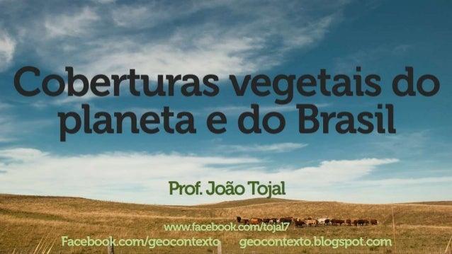 "› . T.-u¡':  -e -› __  V¡ _ [à g _PH _ - e f' ( b (j:  V¡ IV*  r í ~ F 11 A r ,  1 ,  _Ç f _   João Tojal  - › .  -r"". :7 ..."