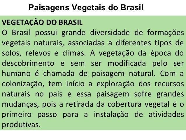 Paisagens Vegetais do Brasil VEGETAÇÃO DO BRASIL O Brasil possui grande diversidade de formações vegetais naturais, associ...