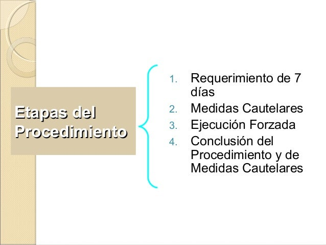 Etapas delEtapas del ProcedimientoProcedimiento 1. Requerimiento de 7 días 2. Medidas Cautelares 3. Ejecución Forzada 4. C...