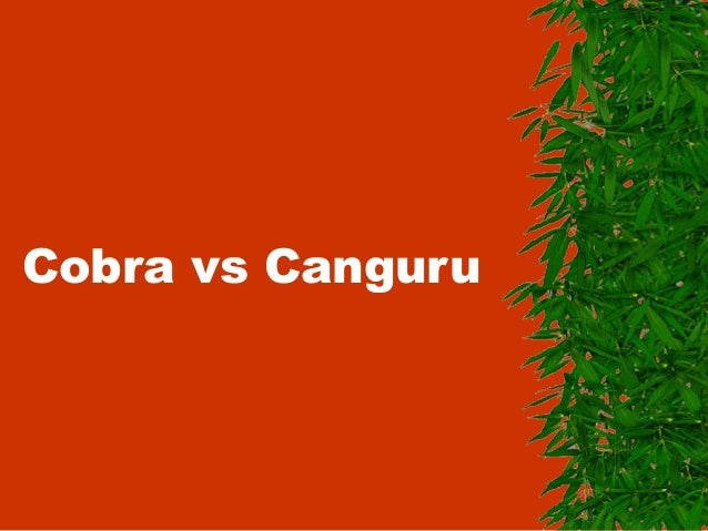 Cobra vs Canguru