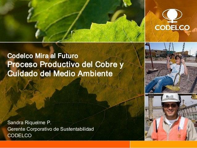 CodelcoMiraalFuturo ProcesoProductivodelCobrey CuidadodelMedioAmbiente SandraRiquelmeP. GerenteCorporativ...