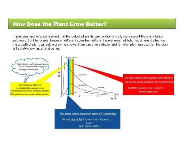 effect of different lights and miracle grow on plants Suzie q wants to know the effect of different colors of light on the growth of plants  in miracle-grow and given 20 ml of water once a day for 2 weeks.