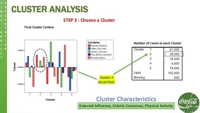 CLUSTER ANALYSIS F I N A L P R O J E C T P R E S E N T A T I O N STEP 3 : Choose a Cluster Cluster 2 SELECTED! External In...