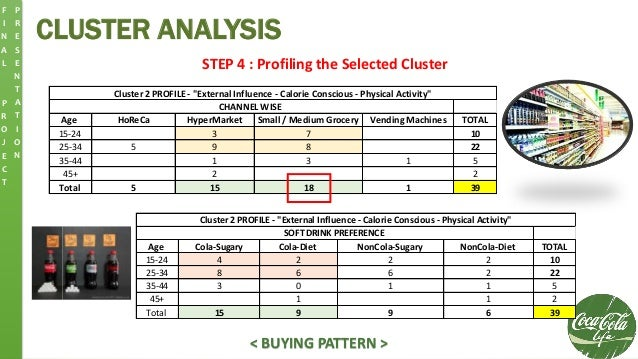 CLUSTER ANALYSIS F I N A L P R O J E C T P R E S E N T A T I O N STEP 4 : Profiling the Selected Cluster Age HoReCa HyperM...