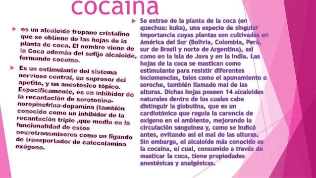 Cocaina Slide 3