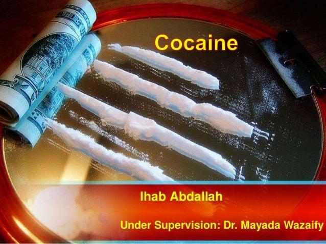 Ihab Abdallah Under Supervision: Dr. Mayada Wazaify