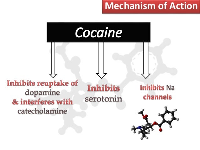 Cocaine in Egypt