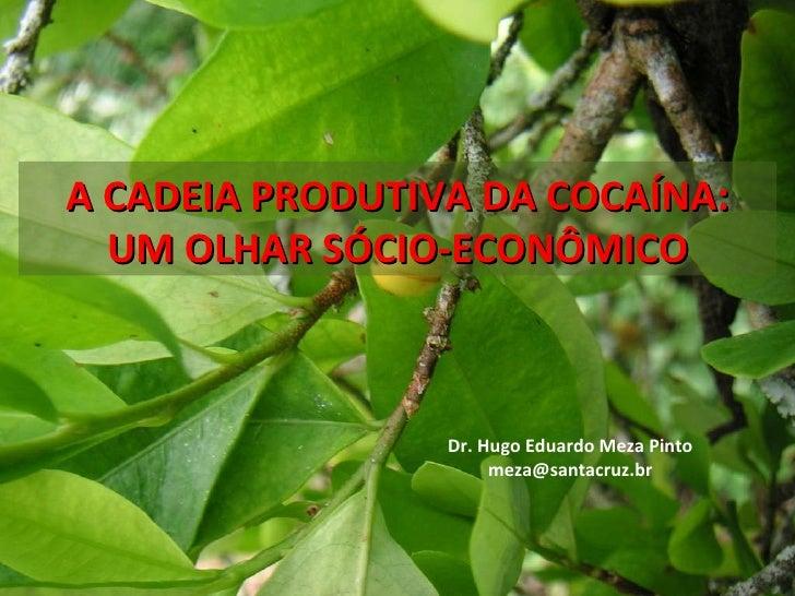A CADEIA PRODUTIVA DA COCAÍNA: UM OLHARSÓCIO-ECONÔMICO Dr. Hugo Eduardo Meza Pinto [email_address]