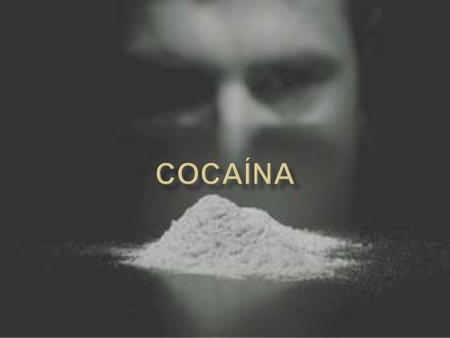    A cocaína é um alcalóide (produto extraído das    folhas de uma planta chamada Erythroxilon    coca encontrada princip...