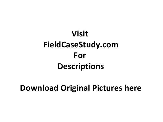 Visit FieldCaseStudy.com For Descriptions Download Original Pictures here