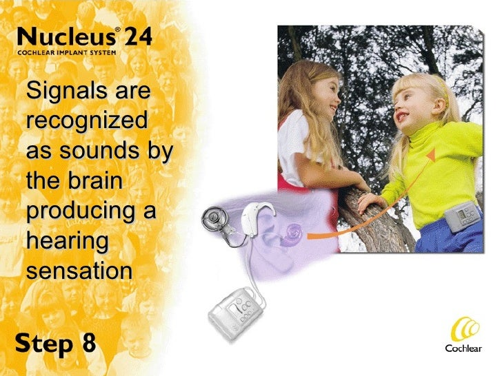 Signals are recognized as sounds by the brain producing a hearing sensation