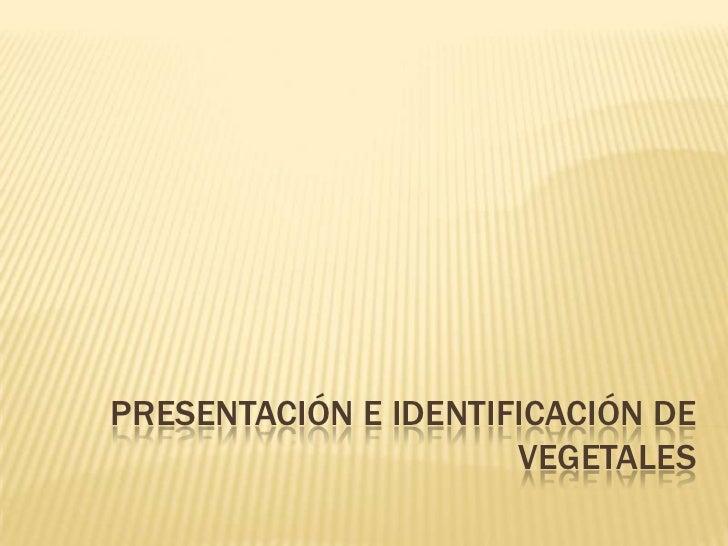 PRESENTACIÓN E IDENTIFICACIÓN DE VEGETALES<br />