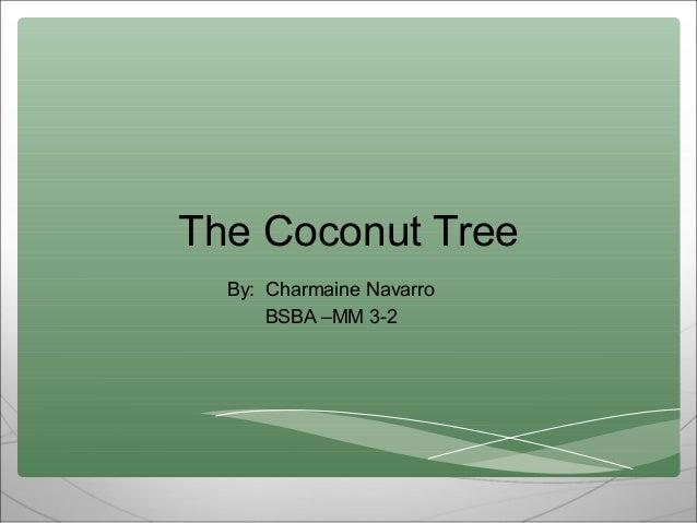Coconut tree ppt