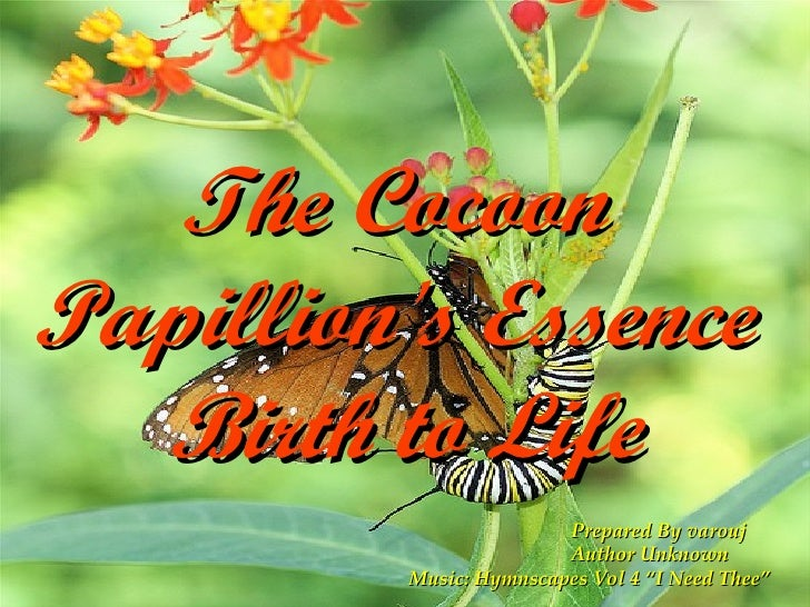 "The Cocoon  Papillion's Essence  Birth to Life Prepared By varouj Author Unknown Music: Hymnscapes Vol 4 ""I Need Thee"""