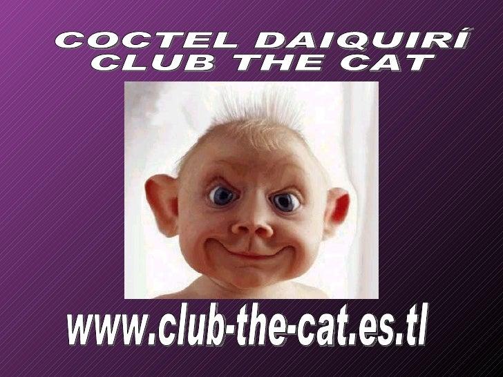 www.club-the-cat.es.tl COCTEL DAIQUIRÍ CLUB THE CAT