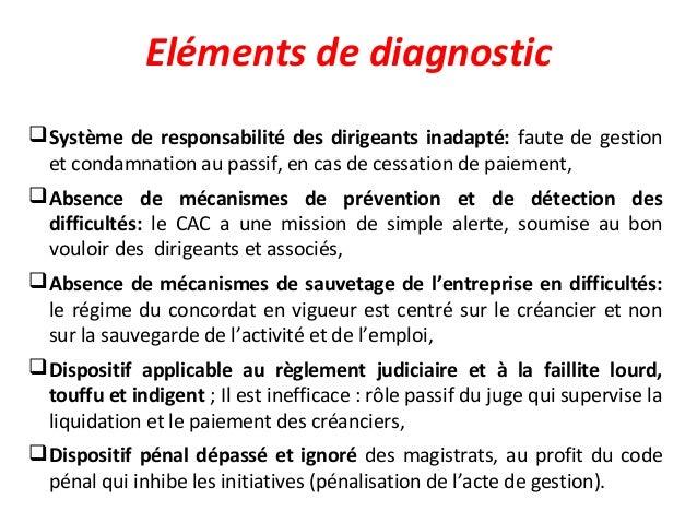 Eléments de diagnostic Système de responsabilité des dirigeants inadapté: faute de gestion et condamnation au passif, en ...