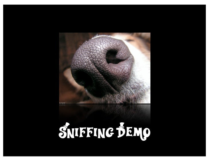 Sniffing D*emo