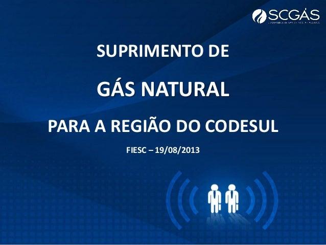 SUPRIMENTO DE GÁS NATURAL PARA A REGIÃO DO CODESUL FIESC – 19/08/2013