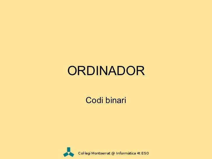 ORDINADOR  Codi binari