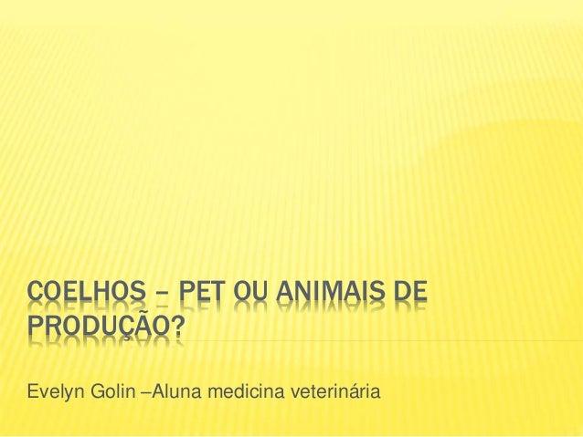 COELHOS – PET OU ANIMAIS DE PRODUÇÃO? Evelyn Golin –Aluna medicina veterinária