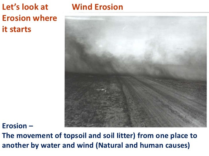 Let's look at       Wind ErosionErosion whereit startsErosion –The movement of topsoil and soil Iitter) from one place toa...